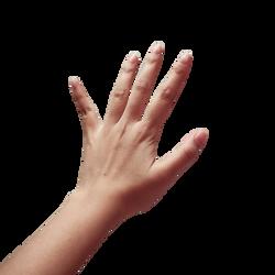 hand-357335_Clip