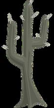cactus-575561__340.png