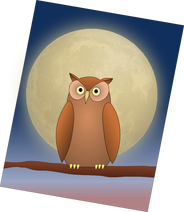 The_Owl_and_The_Moon.png