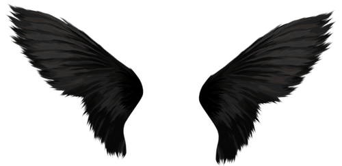 Wing-png-02