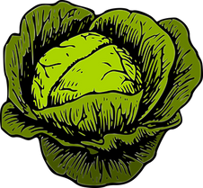 cabbage-1299145__340.png