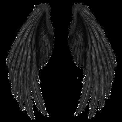 Wings-png-35