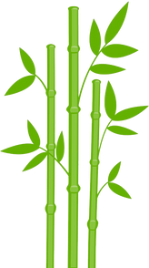Bamboo (7).png