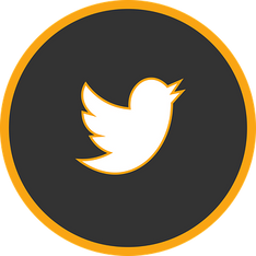 icon-twitter-2898665__340.png