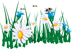 flowers-45786__340.png