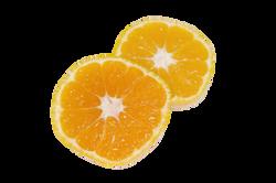 tangerine-507899_Clip