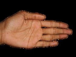 hand-686288_Clip
