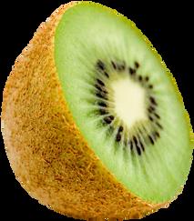 Kiwi-PNG-image.png