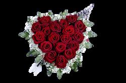 rose-520309_Clip