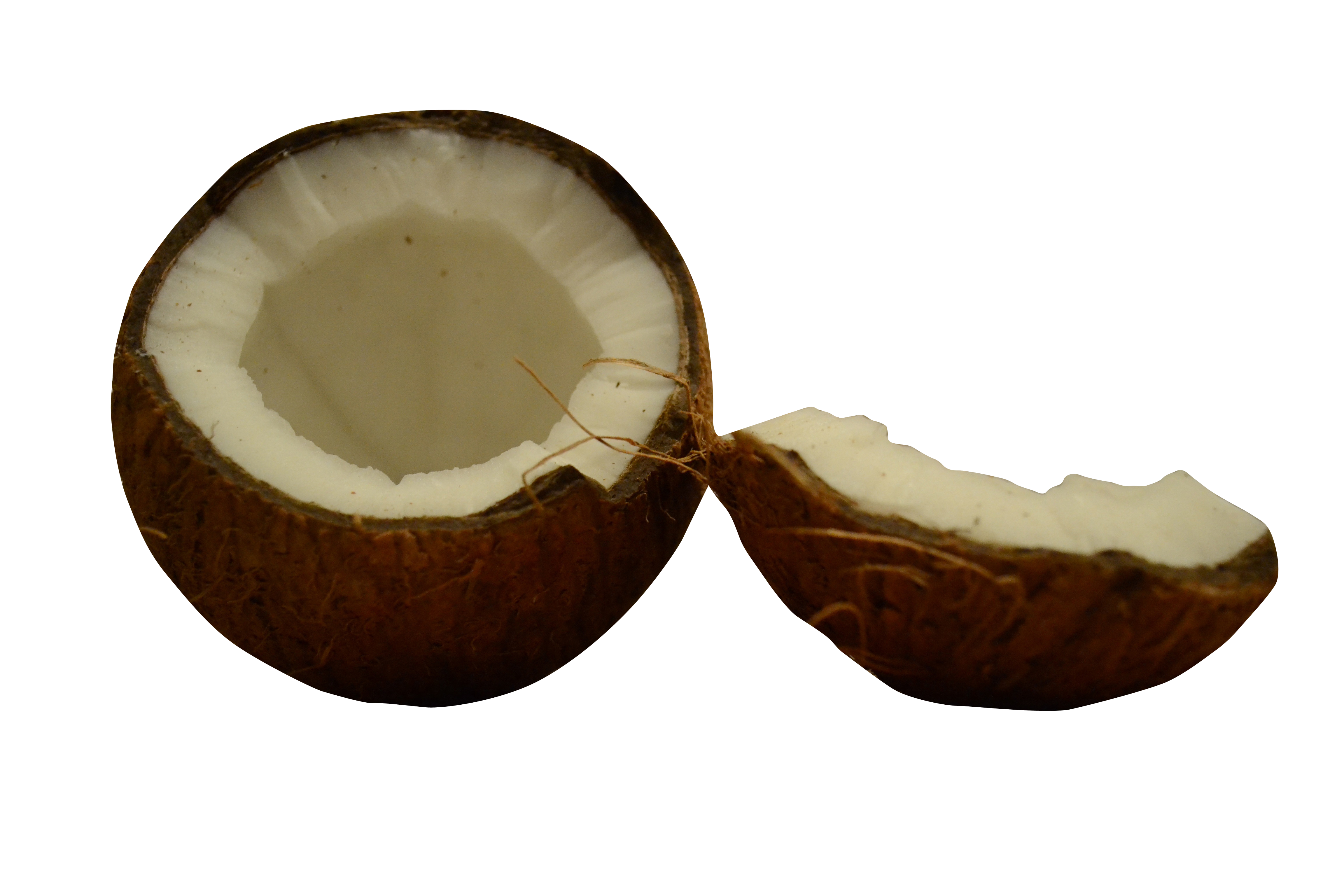 coconut-729059_Clip