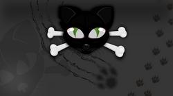 Gato_-_03