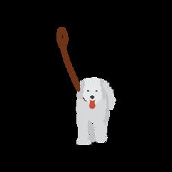 DogOnLeash (1)