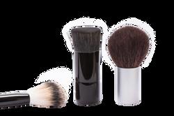 brush-259183_Clip