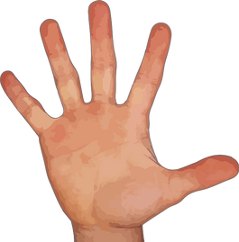 Fingers transparent images