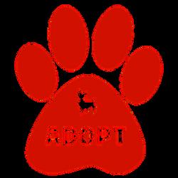 adopt-2167903__340