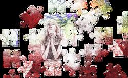 puzzle-1415247_Clip