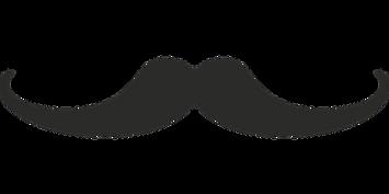 moustache-574959__340.png