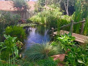 Natural Swimming Pools (8).jpeg