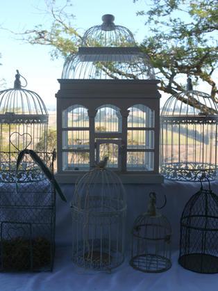 Variety of Decorative Bird Cages.jpg