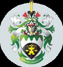 SAIV Logo.png