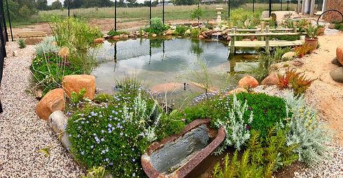 Natural Swimming Pools (12).jpeg