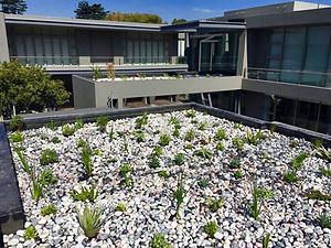 Roof Gardens (4).jpg