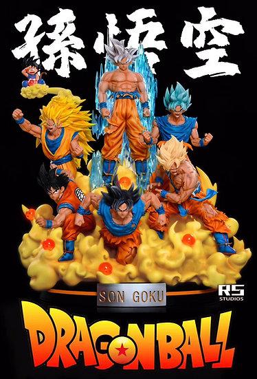 【RS STUDIO】 Son Goku
