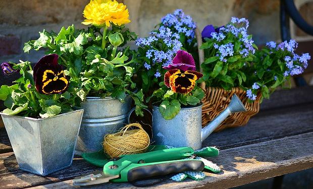 Kertészet.jpg