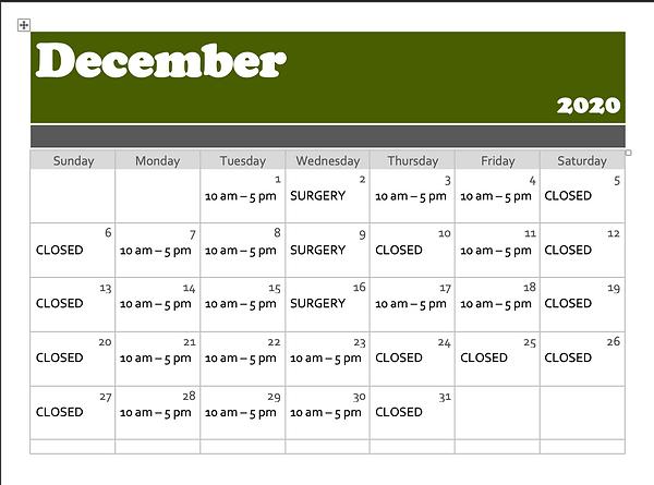 December2020.png