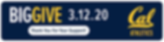 20Dev-Cal-BigGiveThankYou_970x250.png