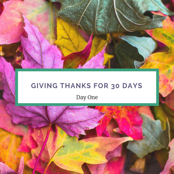 Giving Thanks All of November