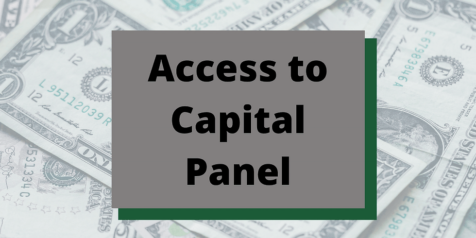 Access to Capital: Meet The Funders Panel