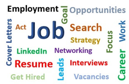 Networking, Career Advice, Job Search Strategy