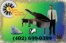 Dan and Piano_with animals