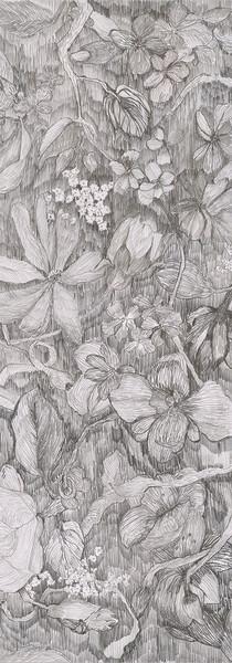 graphite pencils on paper, 46 X 58 cm