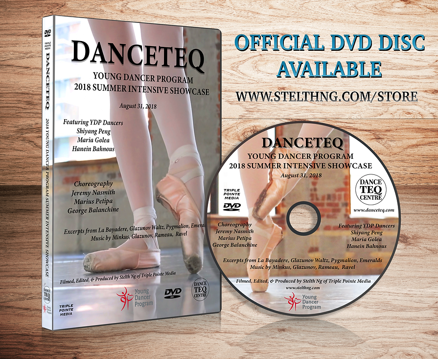 DVD Case & Disc Wooden Display - DT YDP.
