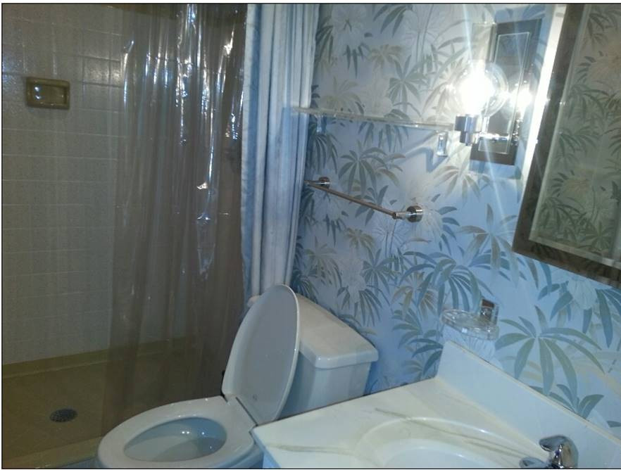 Before- Guest Bath