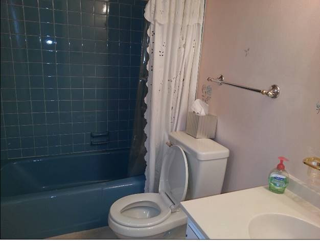 Before - Basement Bathroom