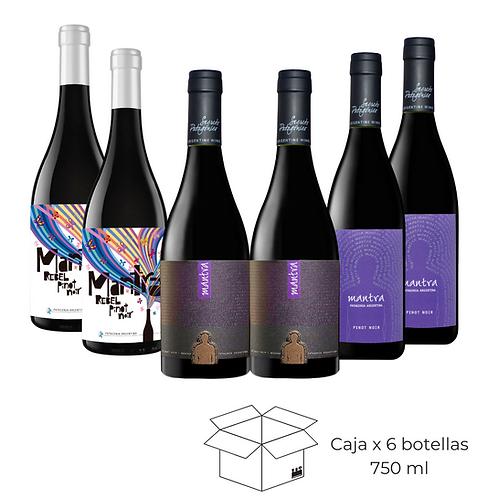 Caja Mix Pinot Noir
