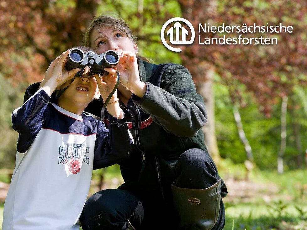 Studio Werner Webdesign Grafikdesign Gestaltung Niedersächsische Landesforsten Schulaktion Waldlabor Unterrichtsmaterialien Charakterentwicklung Aktionsmaterial