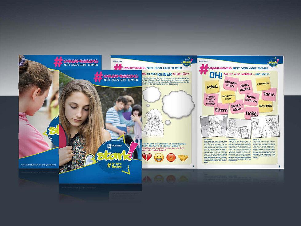 Roland Rechtsschutz Studio Werner Webdesign Grafikdesign Gestaltung Website Unterrichtsmaterial Video Plakat Schulaktion