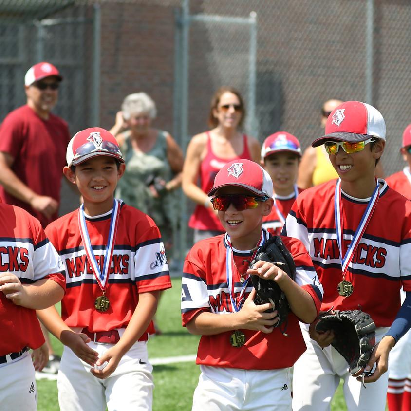 Baseball Buddy USA - Fox Den Tournament U10/U11/U12
