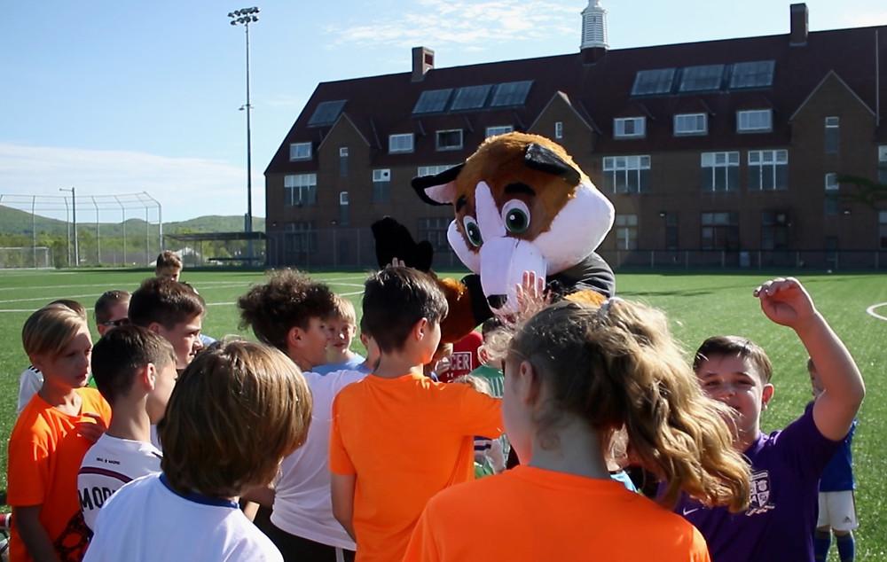 Henry The Fox - Hudson Sports Complex - Warwick, NY