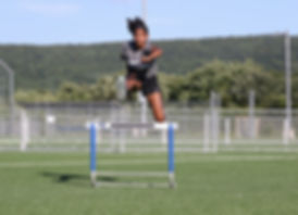HSC - Hurdle Training - Warwick, NY