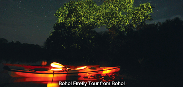 Bohol-Firefly-Tour-from-Bohol.png