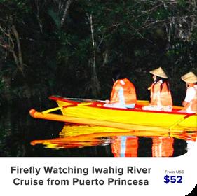 Firefly-Watching-Iwahig-River-Cruise-fro