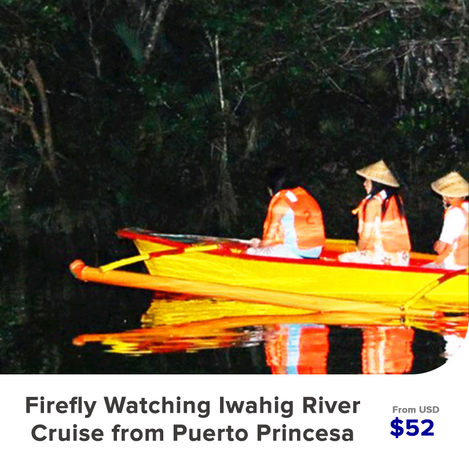 Firefly-Watching-Iwahig-River-Cruise-fro