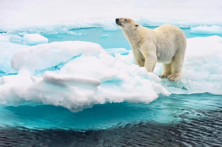 The beautiful Svalbard archipelago