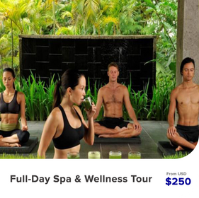 Full-Day-Spa-&-Wellness-Tour.png