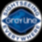 selockup_gray_blue (1).png